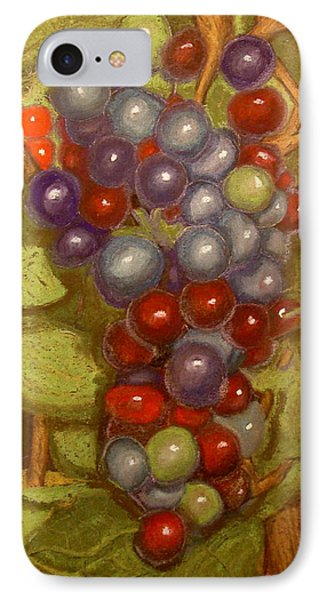 Colored Grapes IPhone Case by Joseph Hawkins