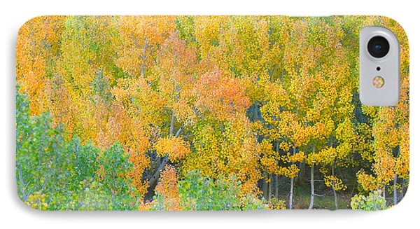 IPhone Case featuring the photograph Colorful Aspen Forest - Eastern Sierra by Ram Vasudev