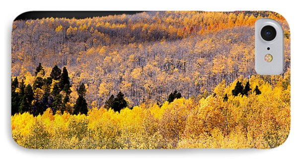 Colorful Aspen Mixture IPhone Case by The Forests Edge Photography - Diane Sandoval