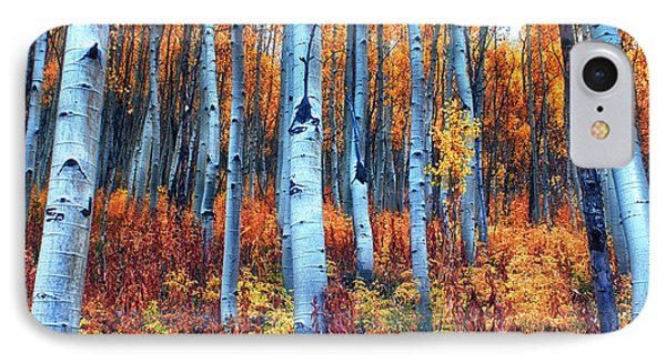 Colorful Aspens Phone Case by Brian Kerls