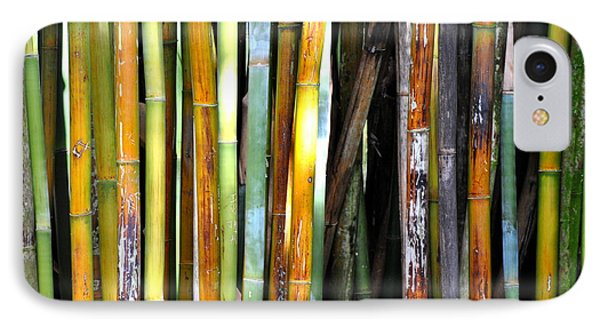 IPhone Case featuring the photograph Colorful Bamboo by Jodi Terracina
