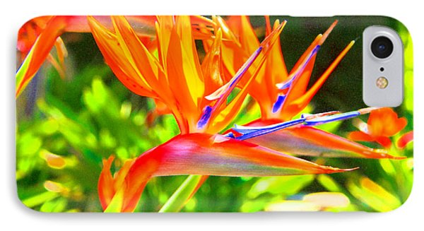 Colorful Birds Of Paradise IPhone Case