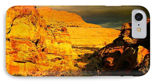 Colorful Capital Reef Phone Case by Jeff Swan