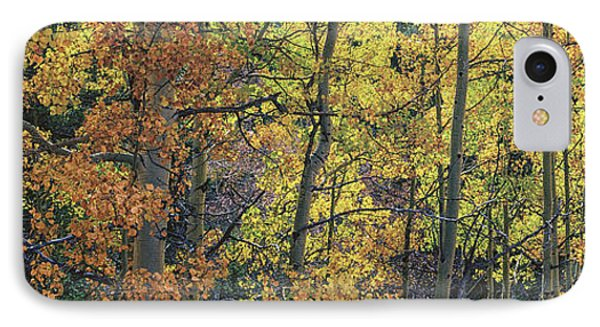 Colorful Changing Aspens Panorama - Divide Colorado IPhone Case by Brian Harig