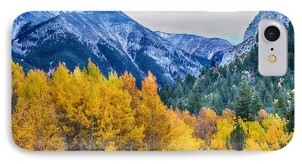 Colorful Crested Butte Colorado Phone Case by James BO  Insogna