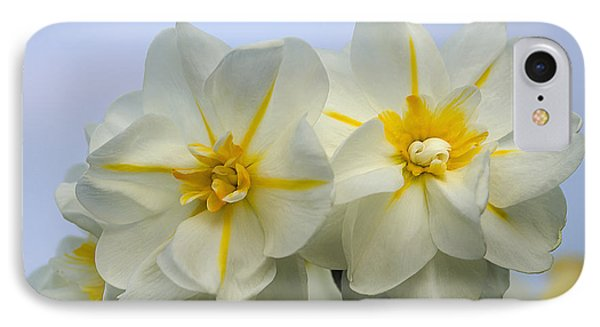 IPhone Case featuring the photograph Colorful Daffy's by Wanda Krack
