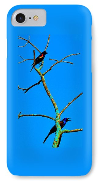 Colorful Duet IPhone Case by Zafer Gurel