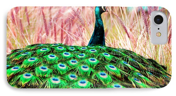 Colorful Peacock IPhone Case by Matt Harang