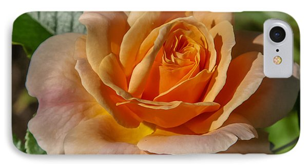 Colorful Rose IPhone Case