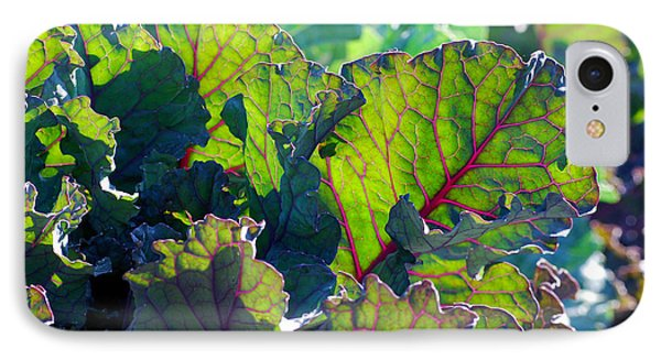Colorful Swiss Chard IPhone Case