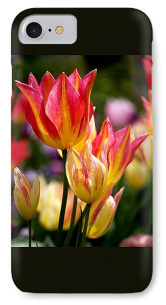 Colorful Tulips IPhone Case by Rona Black