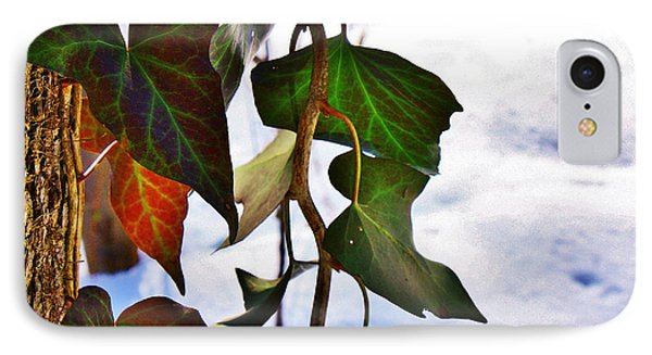 Colorful Winter Leaves IPhone Case by Mikki Cucuzzo