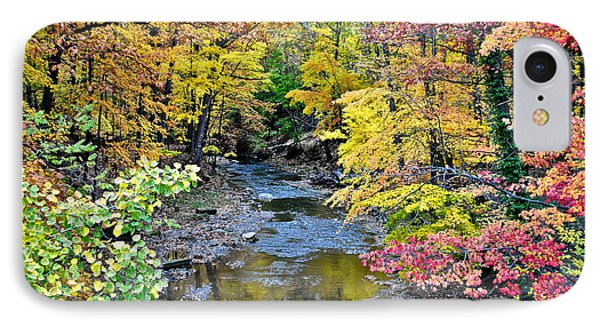 Colors Galore Phone Case by Frozen in Time Fine Art Photography