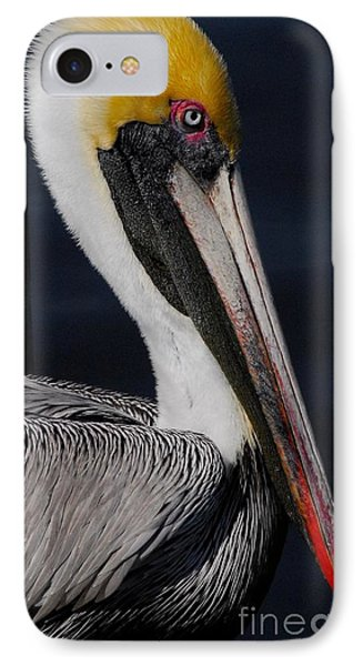 Colors Of A Pelican IPhone Case