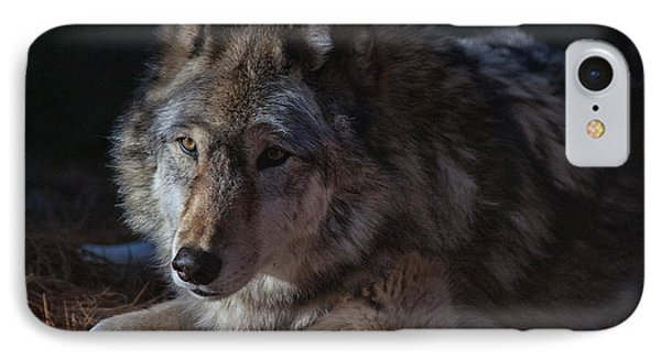 Colors Of A Wolf Phone Case by Karol Livote