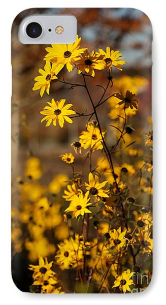 Colors Of Autumn Phone Case by Sabrina L Ryan