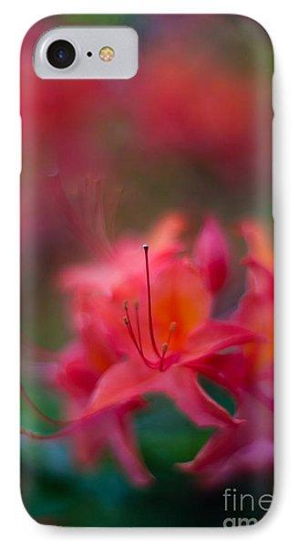 Colors Of Azalea Way IPhone Case by Mike Reid