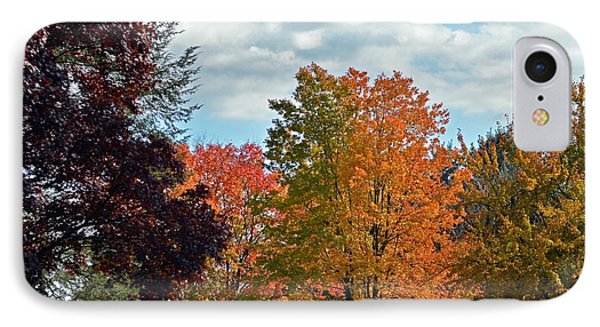 Colors Of Fall IPhone Case by Judy Wolinsky