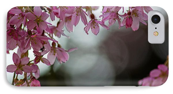 IPhone Case featuring the photograph Colors Of Spring - Cherry Blossoms by Jordan Blackstone