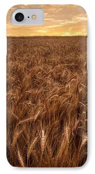Colors Of Wheat IPhone Case by Scott Bean