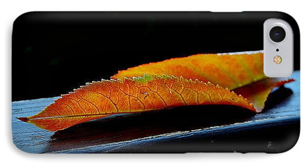 IPhone Case featuring the photograph Colourfull End by Marija Djedovic