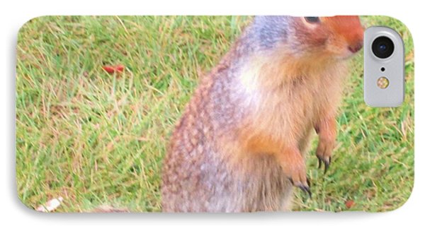 Columbian Ground Squirrel IPhone Case by Cathy Long