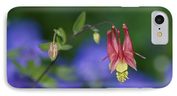 IPhone Case featuring the photograph Columbine And Verbena by Jane Eleanor Nicholas