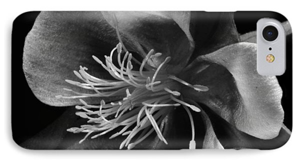 Columbine In Black And White IPhone Case