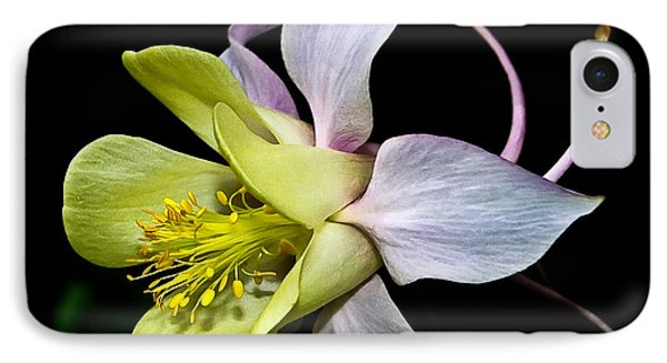 IPhone Case featuring the photograph Columbine by Jane McIlroy