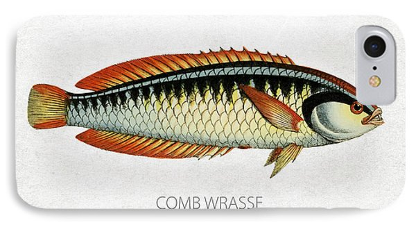 Comb Wrasse IPhone Case by Aged Pixel