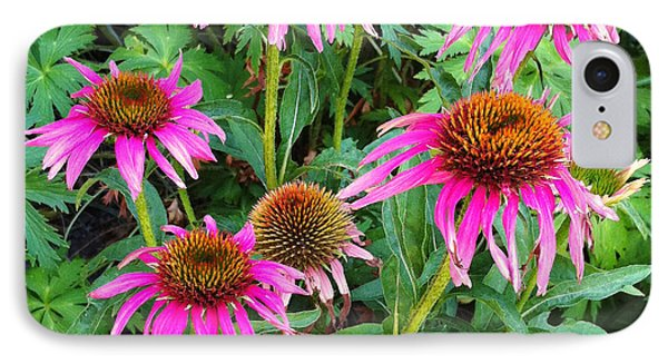 IPhone Case featuring the photograph Comely Coneflowers by Meghan at FireBonnet Art