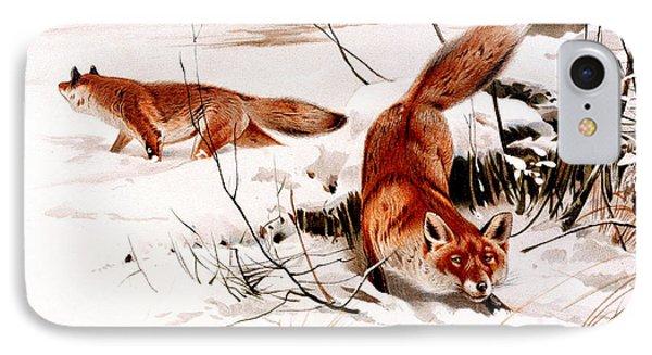 Common Fox In The Snow IPhone Case by Friedrich Wilhelm Kuhnert