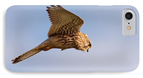 Common Kestrel Hovering In The Sky IPhone Case by Roeselien Raimond