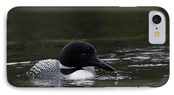 Common Loon 1 IPhone Case by Larry Ricker