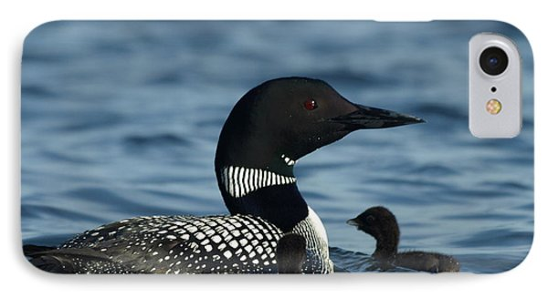 Common Loon Family IPhone Case by James Peterson