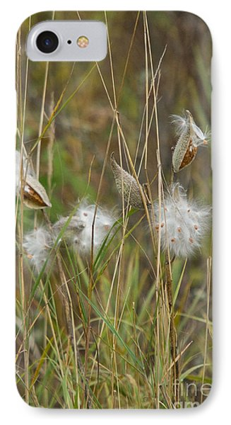 Common Milkweed Phone Case by Linda Freshwaters Arndt