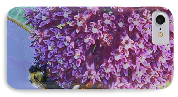Common Milkweed IPhone Case