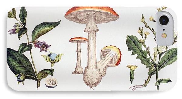 Common Poisonous Plants IPhone Case