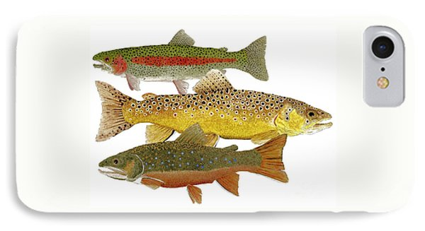 IPhone Case featuring the painting Common Trout  Rainbow Brown And Brook by Thom Glace