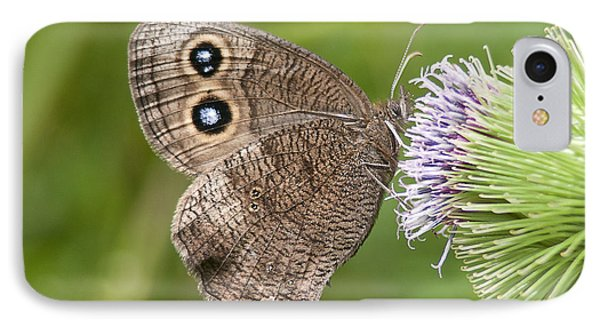 Common Wood-nymph On Thistle IPhone Case