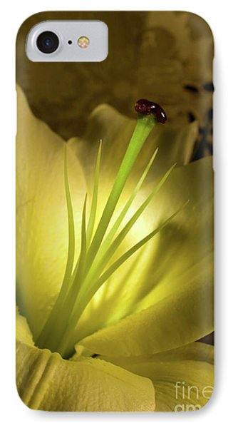 Conca D'or Lily IPhone Case by Linda Matlow