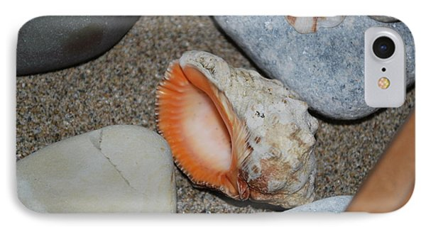 IPhone Case featuring the photograph Conch 1 by George Katechis