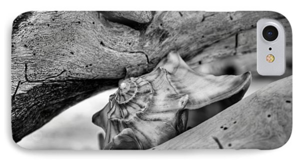 Conch Shell One IPhone Case