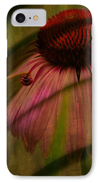 Cone Flower And The Ladybug IPhone Case by Lesa Fine