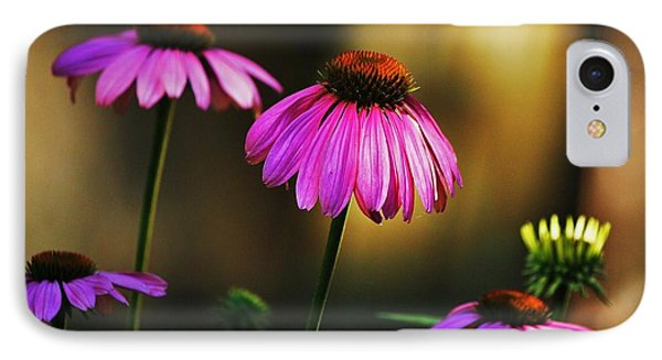 Cone Flower Shines... IPhone Case by Al Fritz