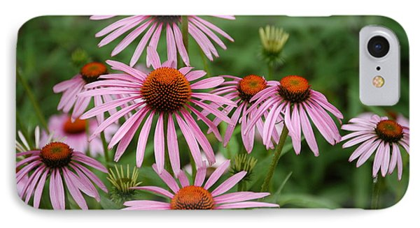 IPhone Case featuring the photograph Cone Flowers by Donald Williams