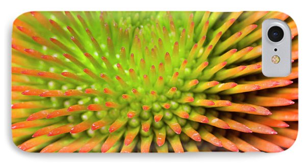 Coneflower Abstract IPhone Case by Nigel Downer