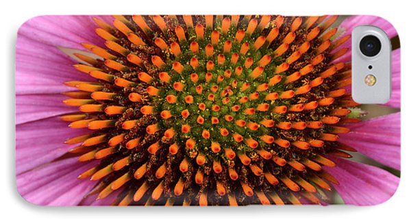 Coneflower Centre Abstract IPhone Case by Nigel Downer