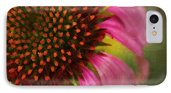 Coneflower IPhone Case by Darren Fisher