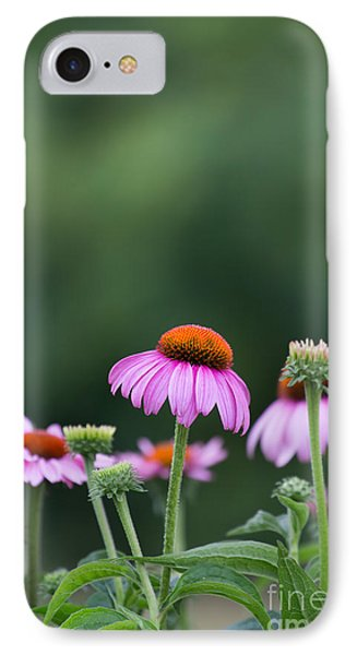 Coneflower Phone Case by Kay Pickens